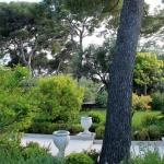 10 bonnes raisons de planter un arbre dans son jardin