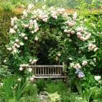 8 astuces pour faire de votre jardin un lieu empli de romantisme