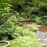 Conseils de pro pour tirer parti d'un jardin exposé plein nord